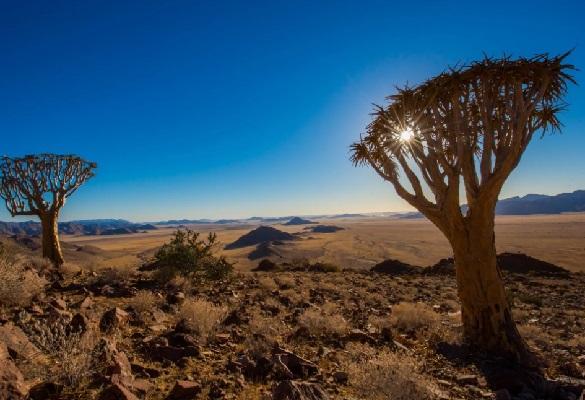 Намибия - политическая история