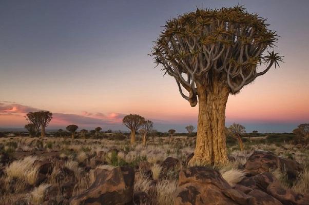 Намибия - политическая история. Виндхук
